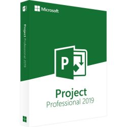 project-professional-01