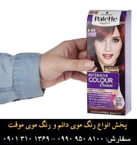 ۶ کیت رنگ موی پلت سری Intensive مدل Glowing Chestnut شماره ۸۸-۶