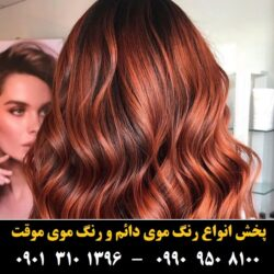 مو (۳۰) [رنگ مو]