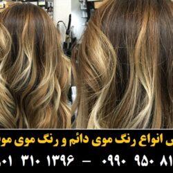 مو (۲۳) [رنگ مو]