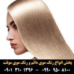 مو (۴۷۹) [رنگ مو]