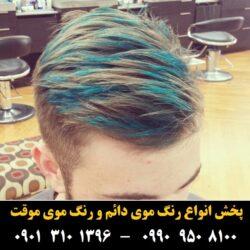 مو (۲۴) [رنگ مو]