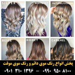 مو (۲۲) [رنگ مو]