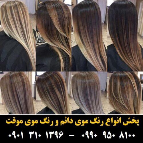 مو (۳۷۴) [رنگ مو]
