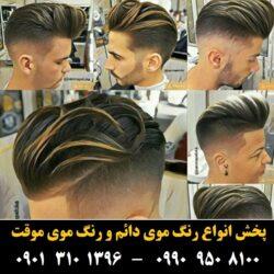 مو (۵۱۷) [رنگ مو]