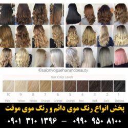 مو (۵۱۰) [رنگ مو]