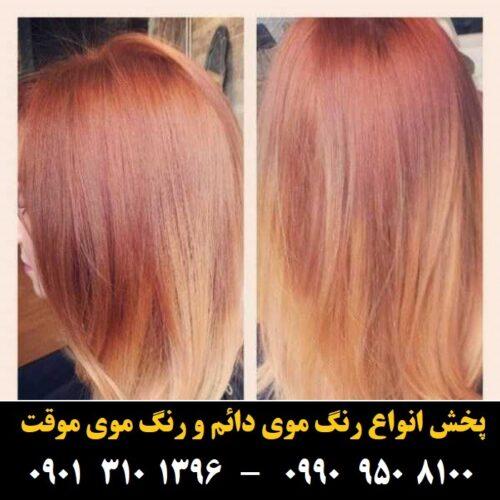 مو (۹۶۸) [رنگ مو]