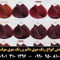 مو (۵۴۰) [رنگ مو]