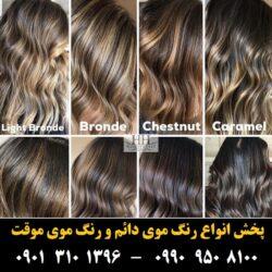 مو (۴۹۳) [رنگ مو]