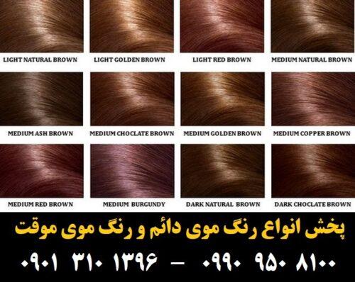 مو (۱) [رنگ مو]
