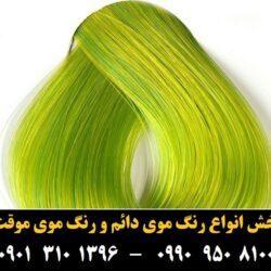 مو (۵۶۵) [رنگ مو]