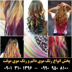 مو (۵۰۴) [رنگ مو]