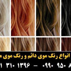 مو (۵۶۱) [رنگ مو]
