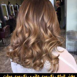 مو (۵۵۴) [رنگ مو]