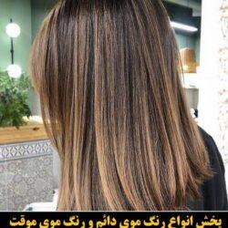 مو (۴۶۹) [رنگ مو]